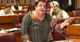 کشمیر معاملے پر شیری مزاری نے اپنی ہی حکومت کا بھانڈا پھوڑدیا