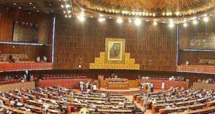 اب بچوں سے زیادتی نہیں ہوگی قومی اسمبلی نے علی محمد خان کی جانب سے پیش کی گئی قرارداد منظور کرلی